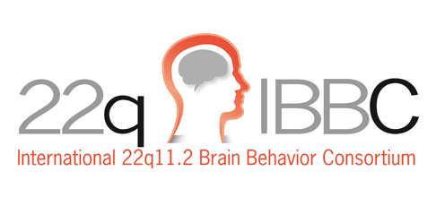 International 22q11.2 Brain Behavior Consortium